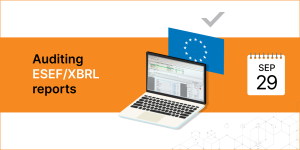Auditing ESEF/XBRL reports - Balkan Services